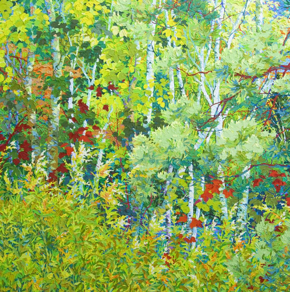 Santa Fe Hidden Marsh II