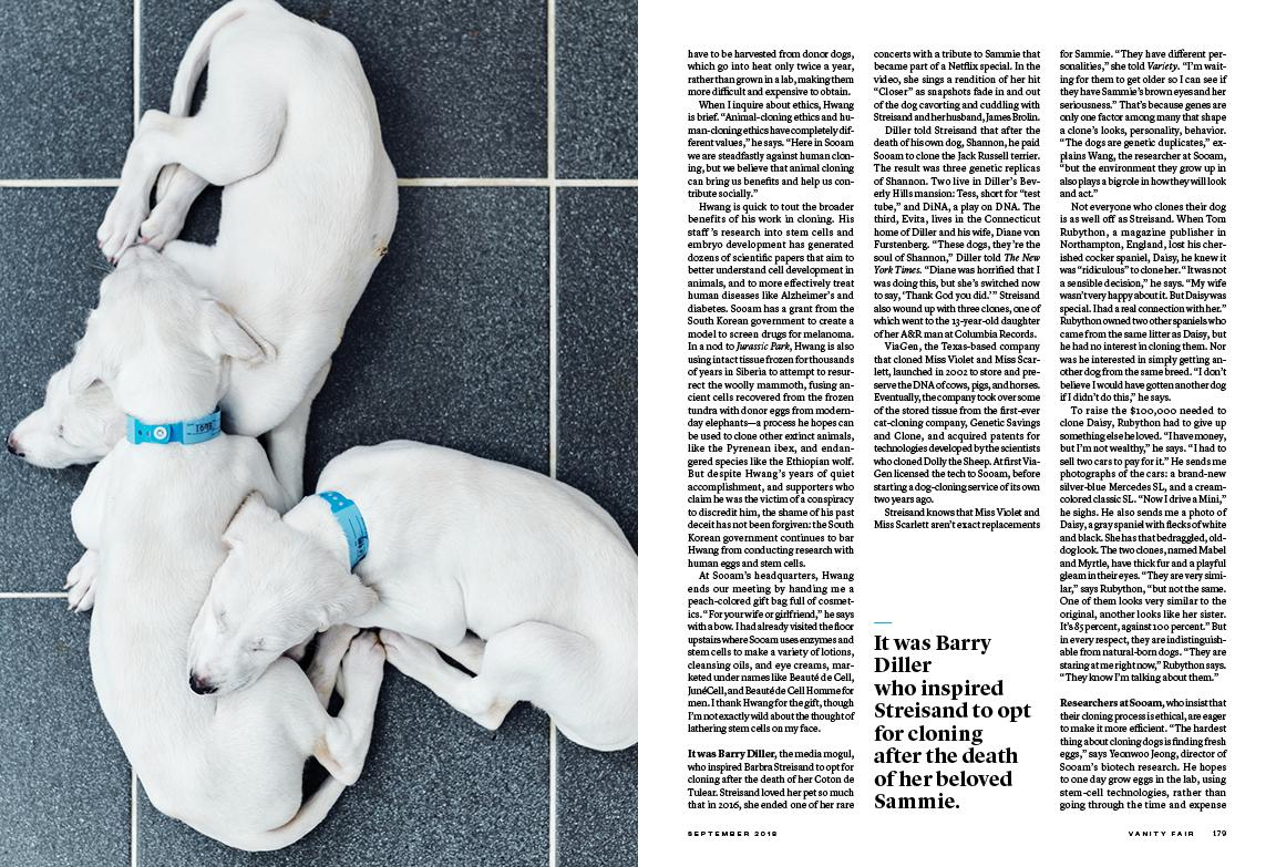 09 DOG CLONING_72dpi3.jpg