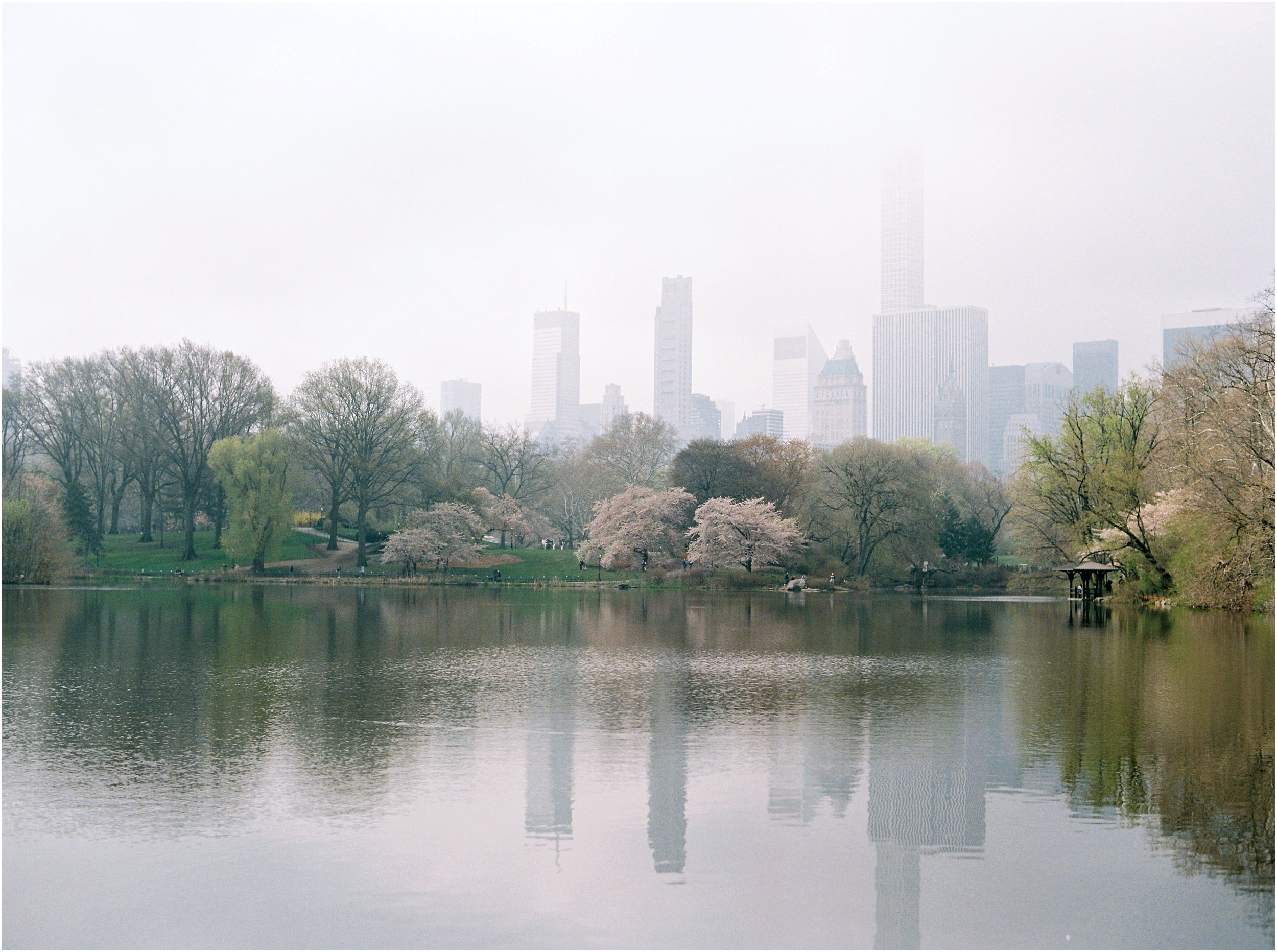 JeremiahRachelPhotography_CentralPark_NYC_SpringtimeBloom_EngagementSession0005.JPG