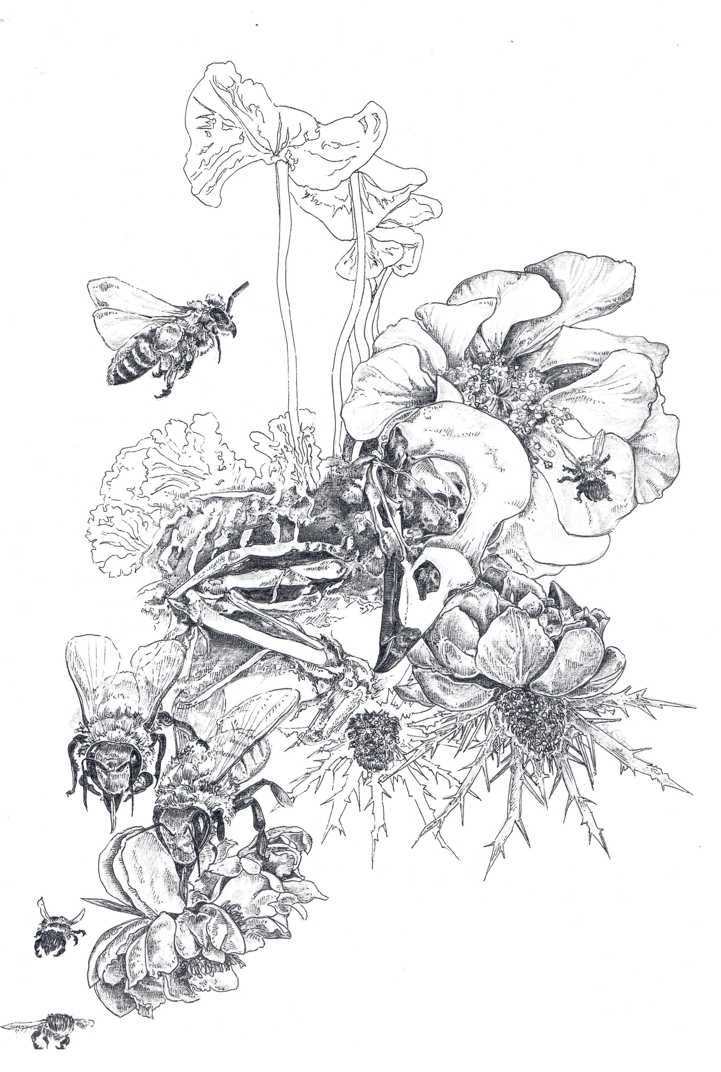 Bird Skull Floral