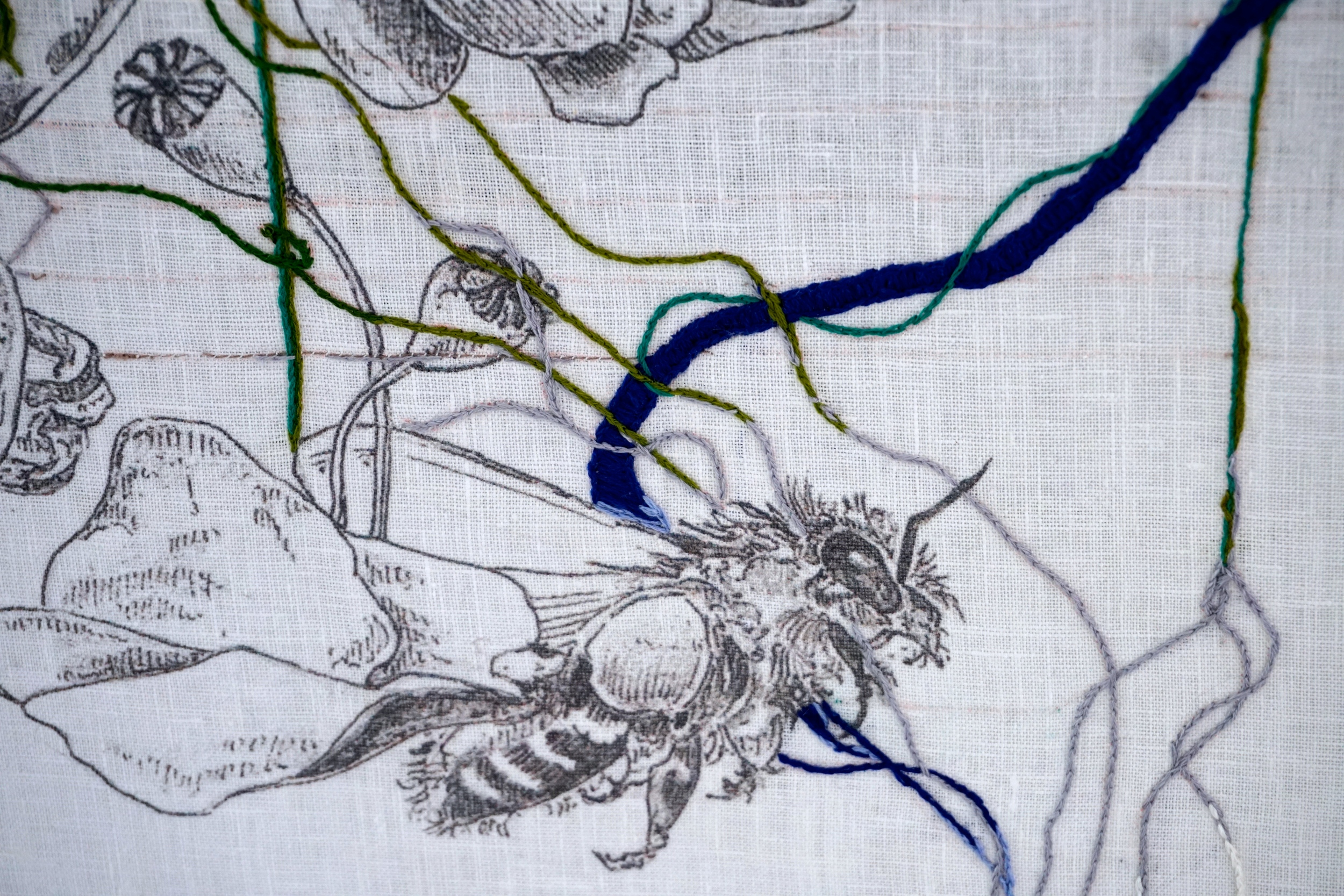 String and Bone 2 (detail)