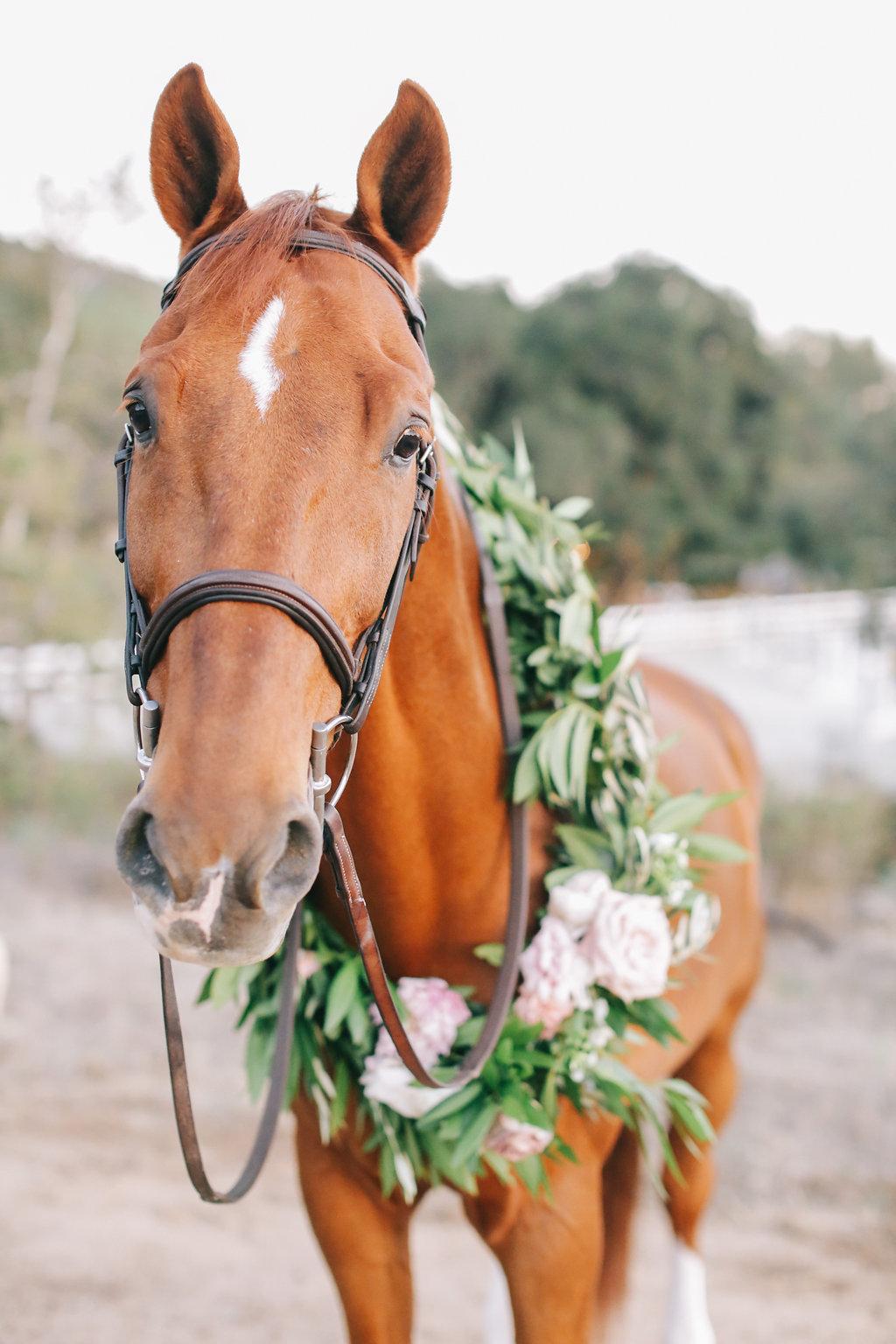 LVL Weddings and Events Brandon Kidd Equestrian Wedding (85).jpg