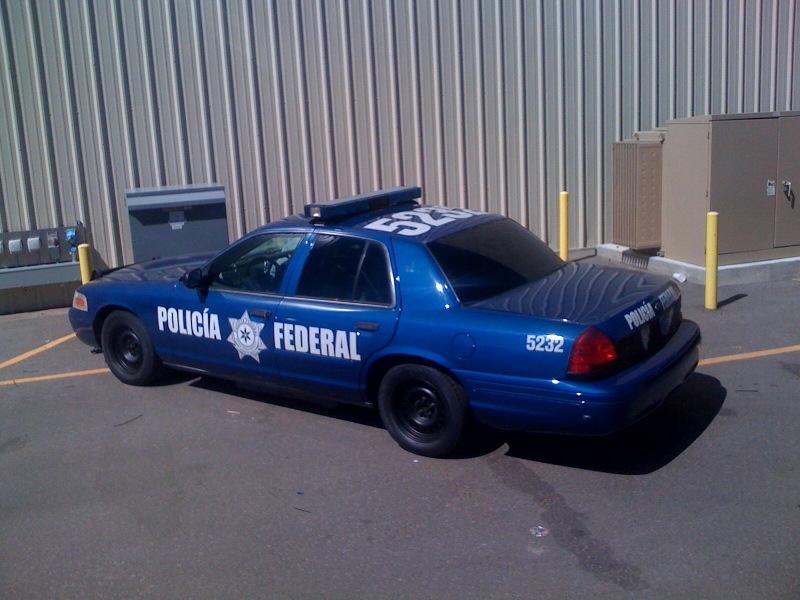 federali.jpg