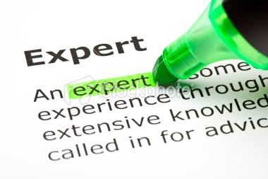 stock-photo-16572419-expert-highlighted-in-green.jpg