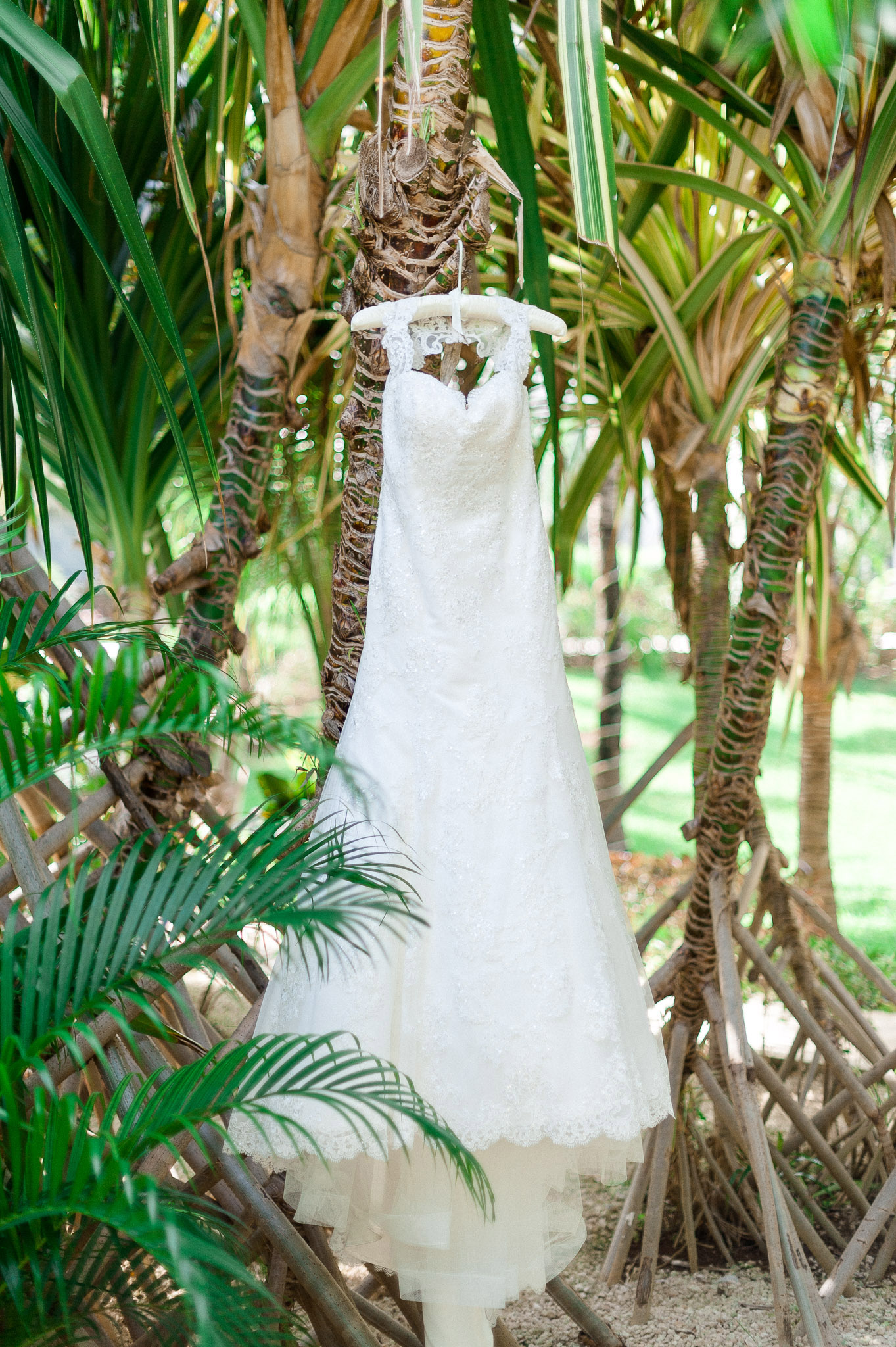 Megan and Chris wedding-7.jpg