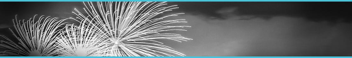 lexheader_fireworks.jpg