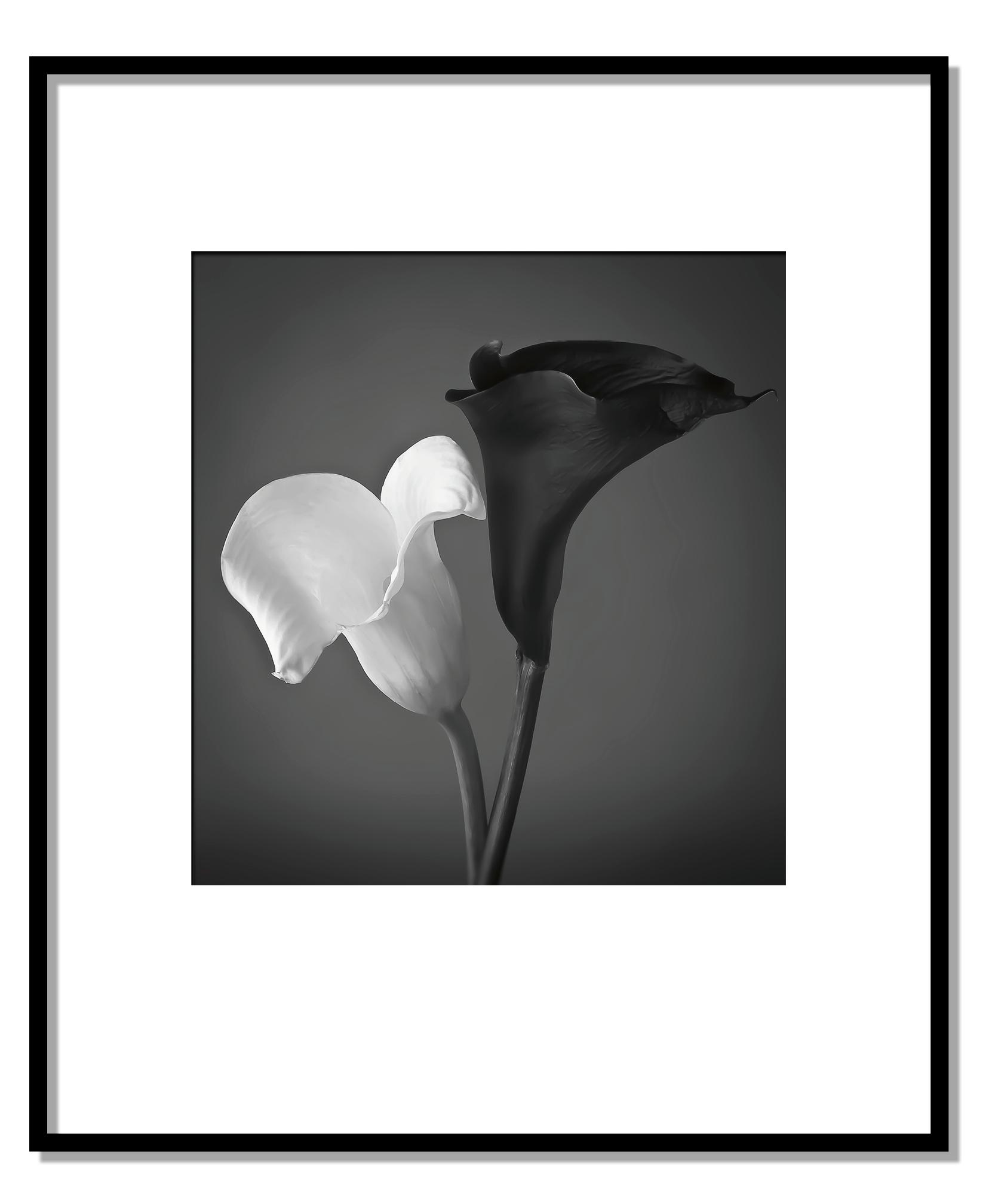 White & Black Calle Lilies.jpg
