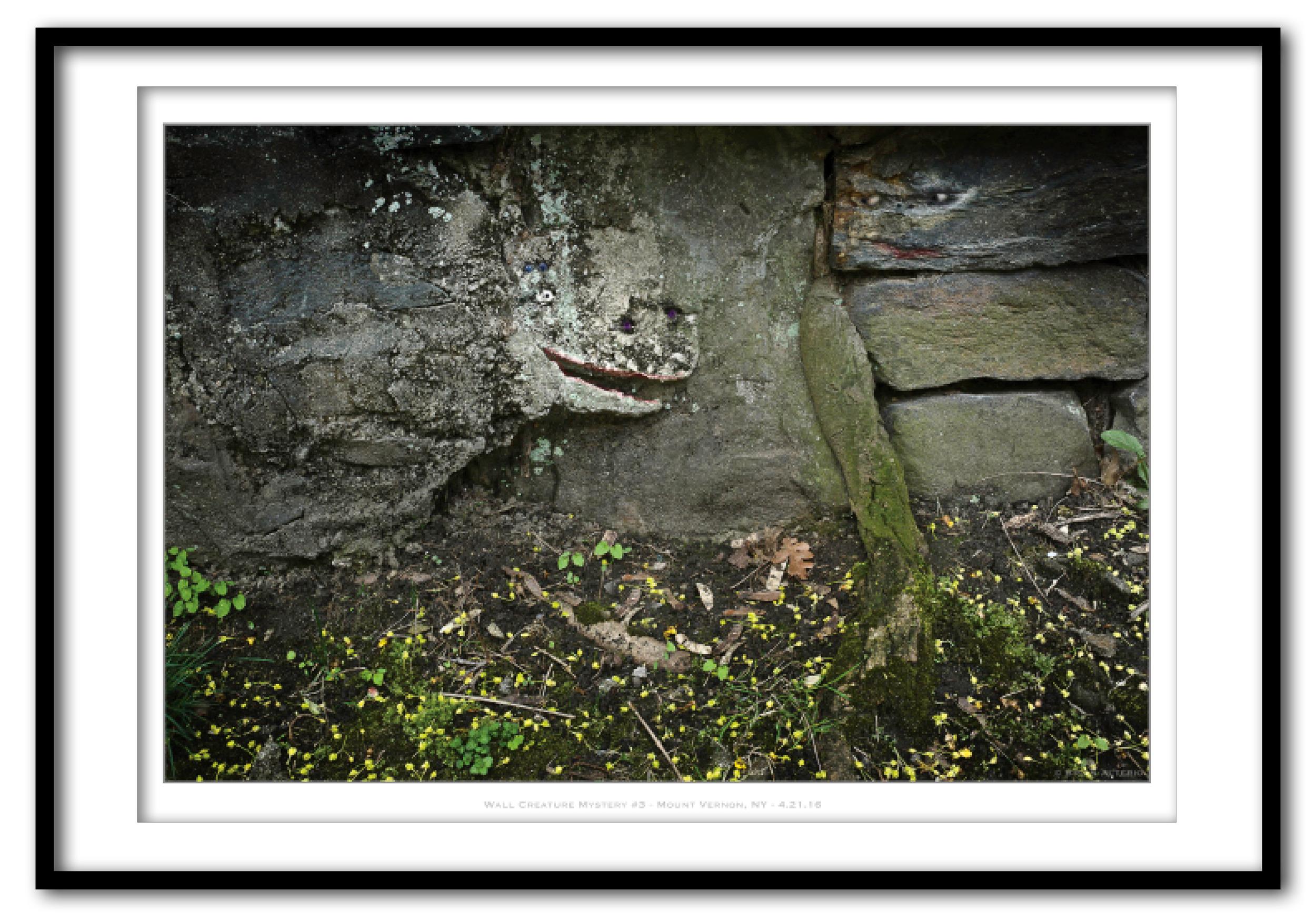 Wall Creature Mystery #3 - Mount Vernon, NY - 4.21.16 .jpg