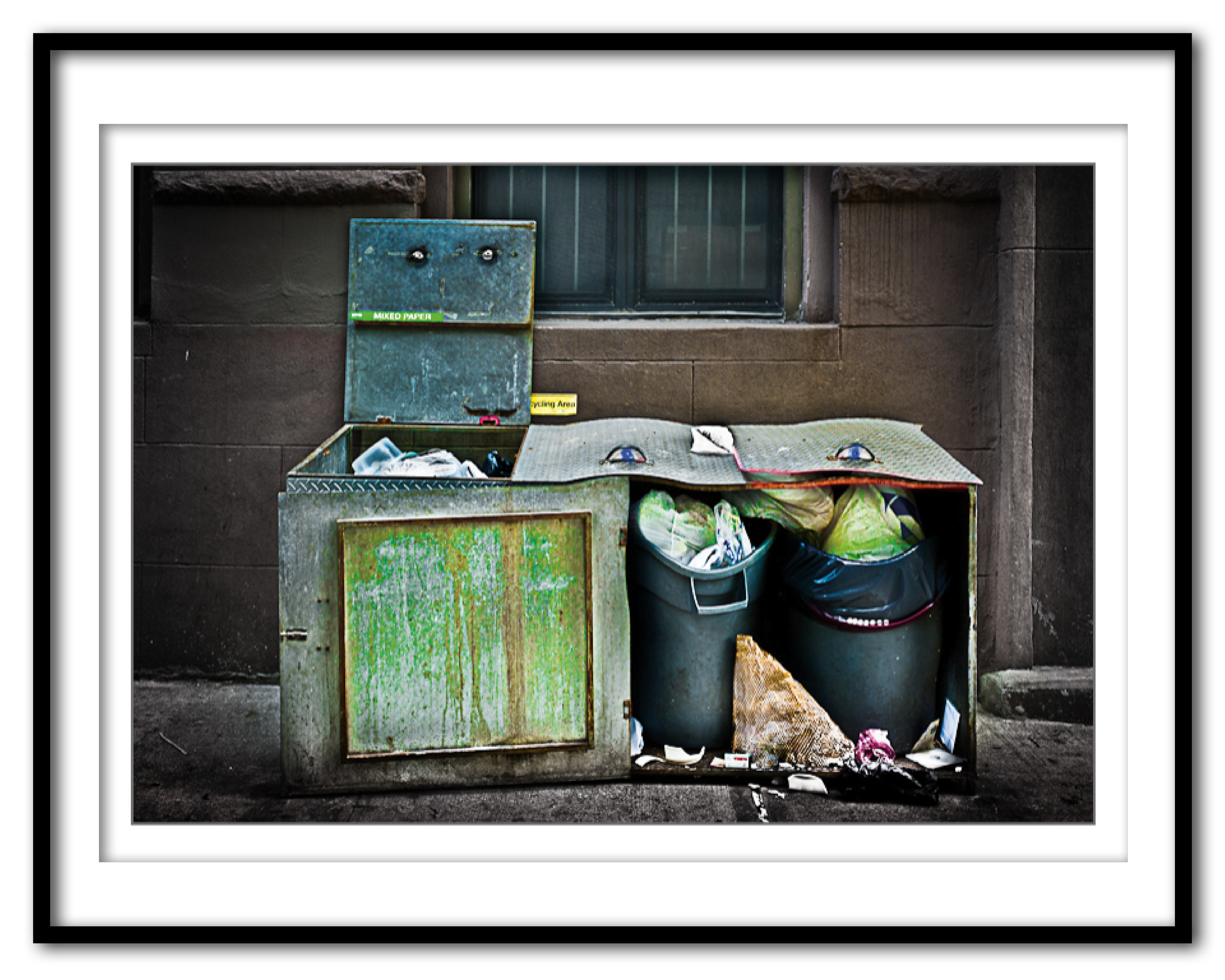 Trashed Trash Bins Mystery #2 - 5.30.16 - Framed.jpg