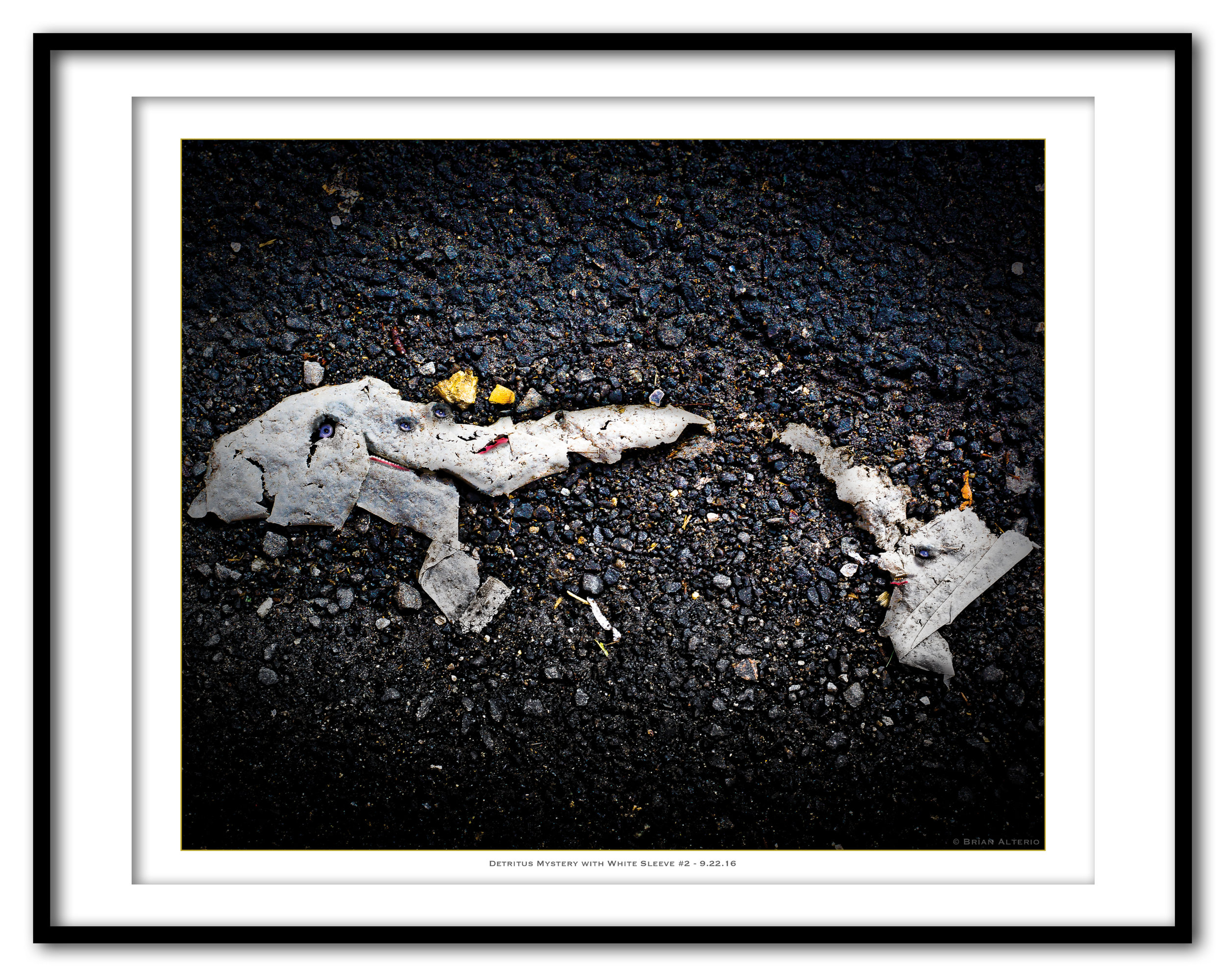 Detritus Mystery with White Sleeve #2 - 9.22.16 - Framed.jpg