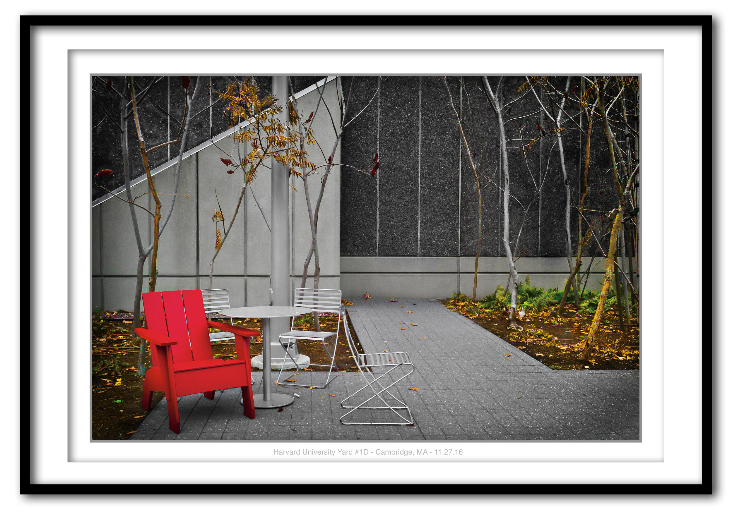Harvard Yard #1D, Cambridge, MA 11.27.16 - Framed.jpg