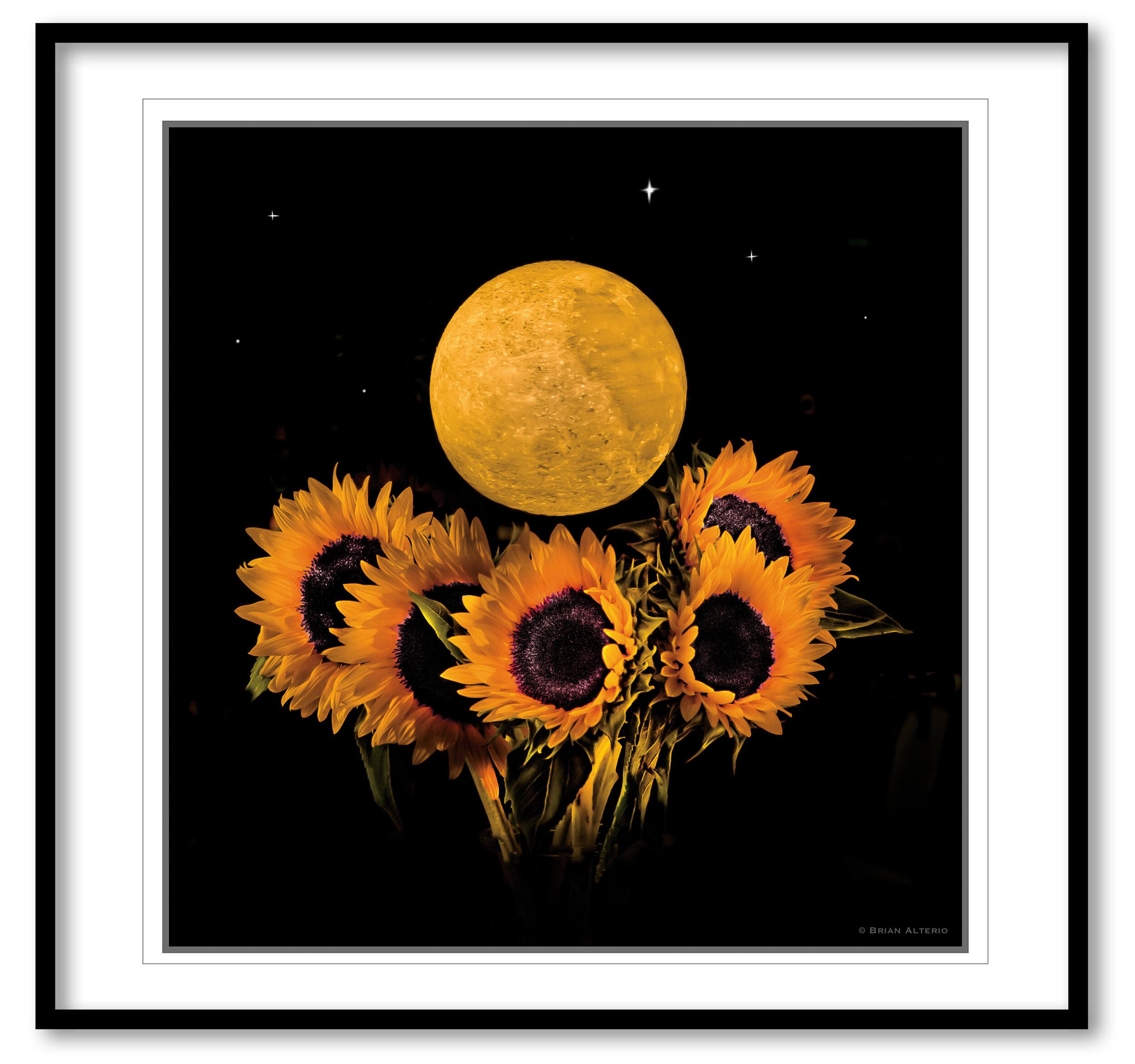 Moon & Sunflowers - 8.19.19 Framed.jpg
