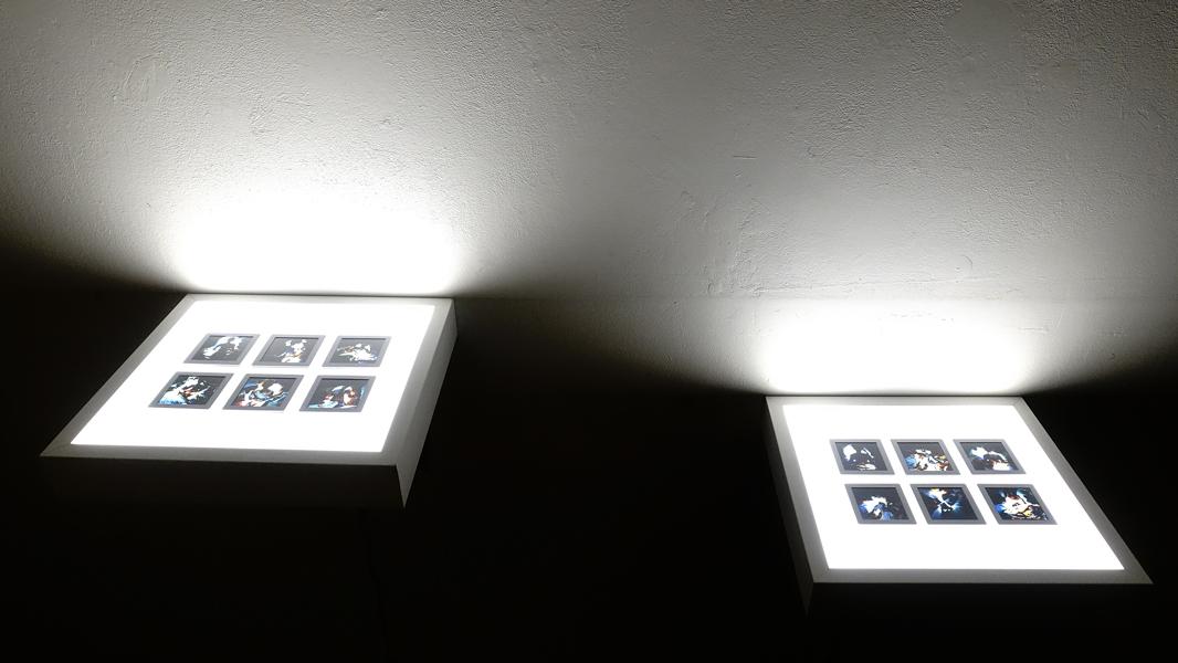 rachael-ireland-and-taryn-raffan-ellipse-install-shot-5.jpg