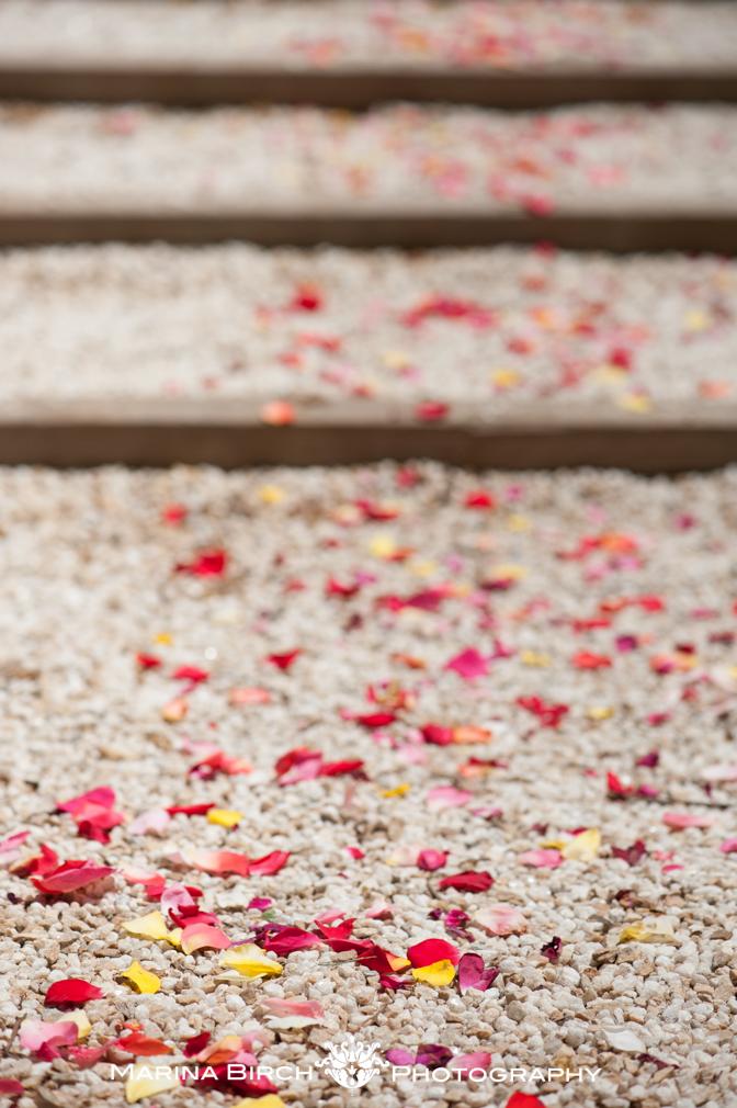 MBP wedding-16.jpg