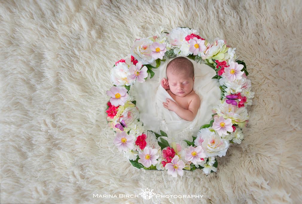 MBP. newborn polito-4.jpg