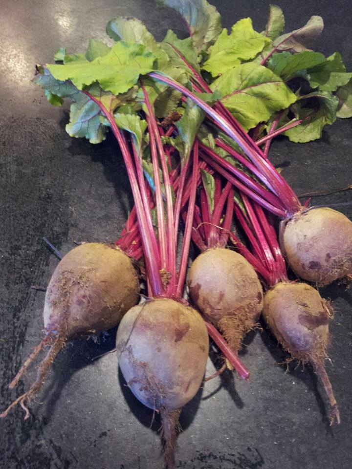 Beets, like all veggies, are very nutritious