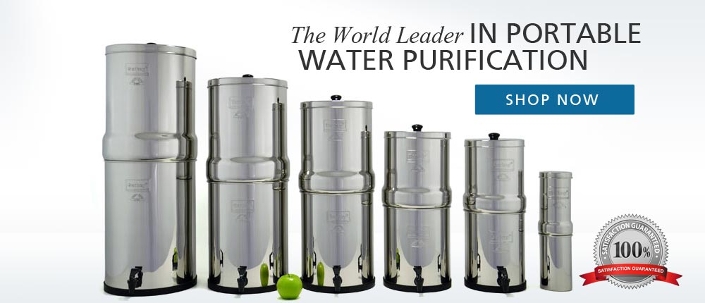 What water filter does Anthony William recommend