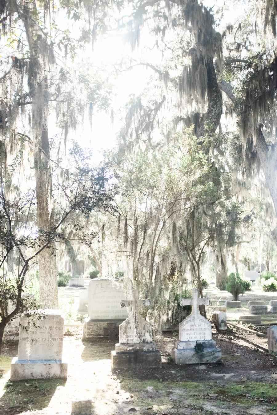 1480 bonaventure cemetery savannah georgia02.JPG