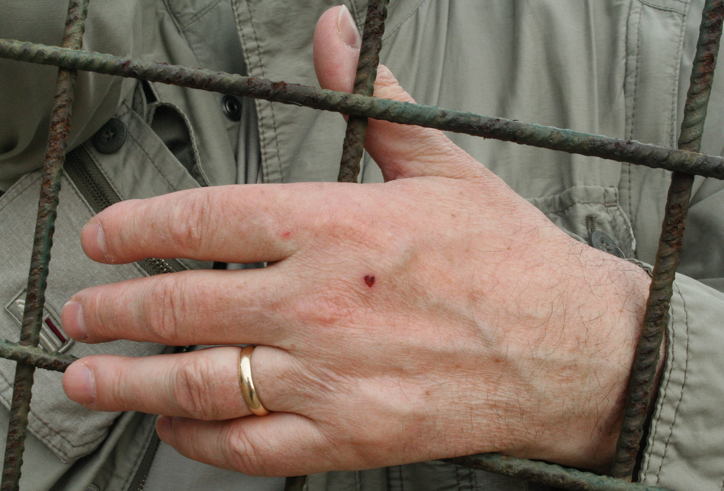 My father's hand, adorned with a tiny heart-shaped scab that did not escape my attention. Photo taken in Siena on May 19, 2006—an astonishing 11 years, 11 months, and 11 days before the day my father would die.