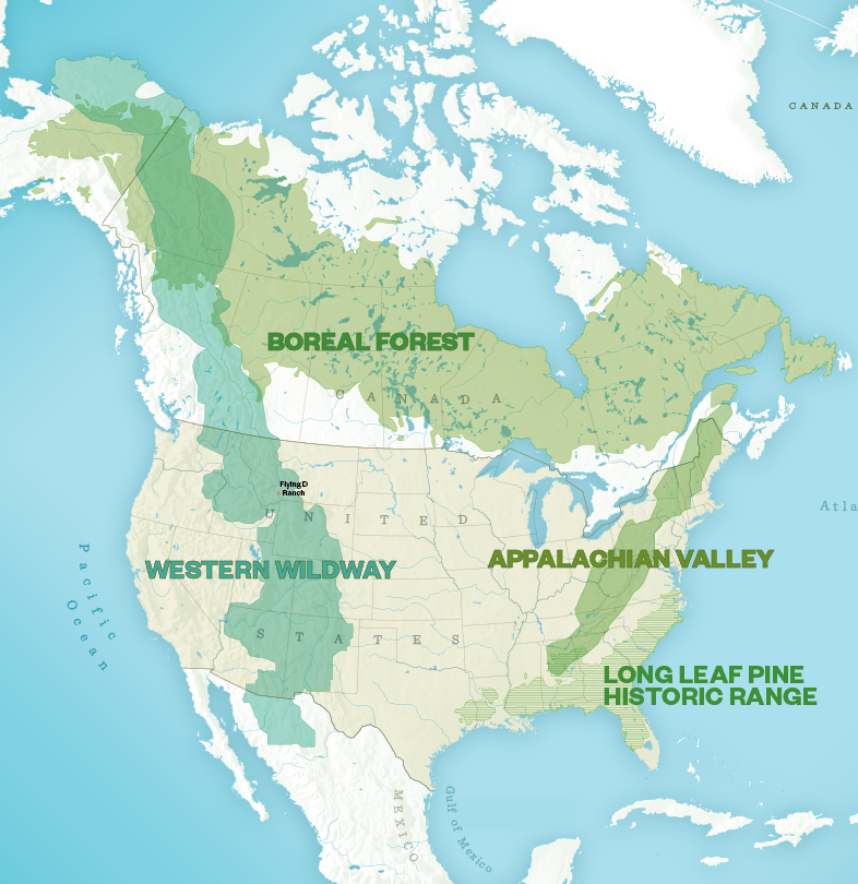 Wildlife corridors: four proposals to 'rewild' portions of North America.  Smithsonian Institute ,  CC BY-NC