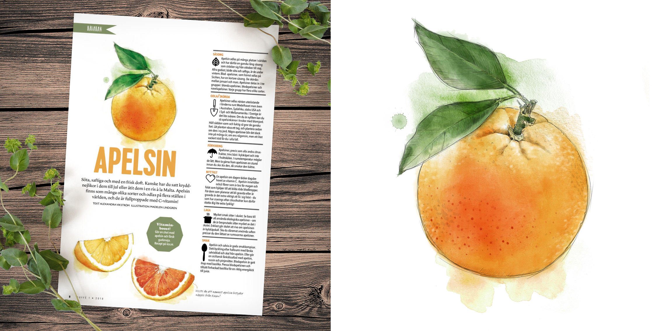 Buffe-apelsin.jpg