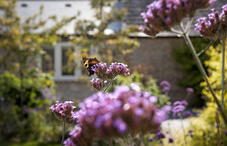 Cottage-Oddington-3991.jpg