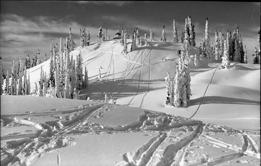 Skiers Mt. Revelstoke [DN-210]