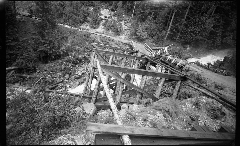 Big Bend Silver Tip Bridge Out [DN-104]