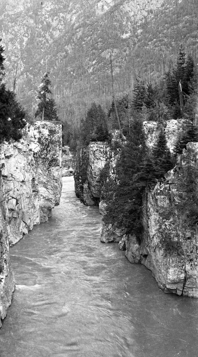 Box Canyon, Illecillewaet River, c. 1917 [DN-996]