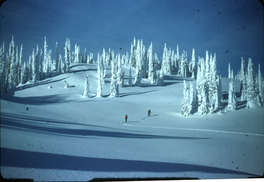 Skiing on Mt. Revelstoke Summit [DC1-10]