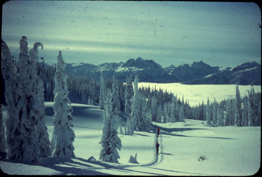 Skiers on Mt. Revelstoke Summit [DC1-24]