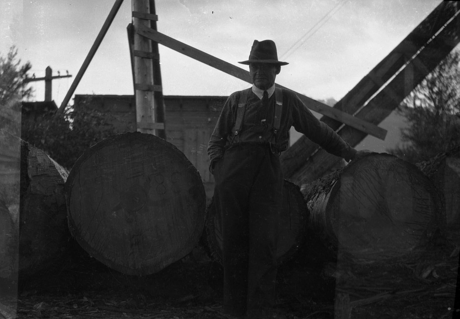 Dick Sawyer Posing with Logs [DN-461]