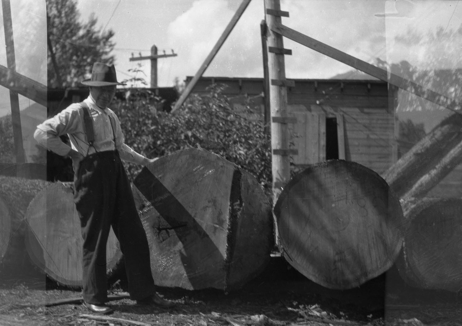 Dick Sawyer with Logs [DN-462]