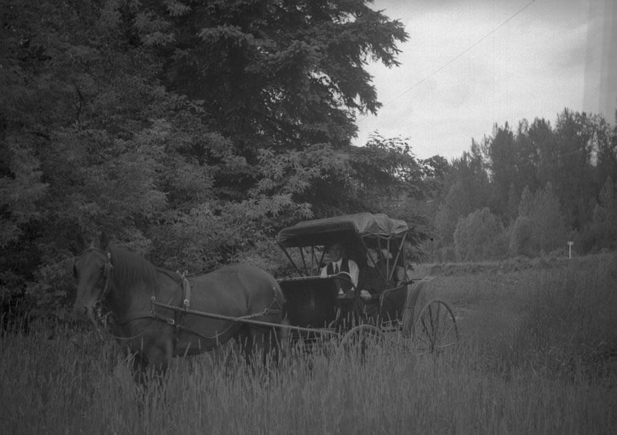 Golden Spike Parade, 1945 [DN-720]