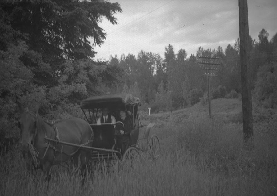 Golden Spike Parade, 1945 [DN-719]