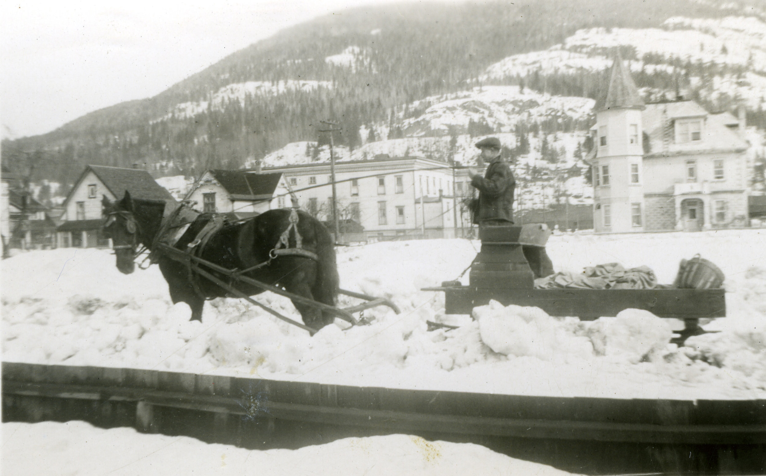 Man on horse-drawn sled with view of Pradolini house in background (far right)