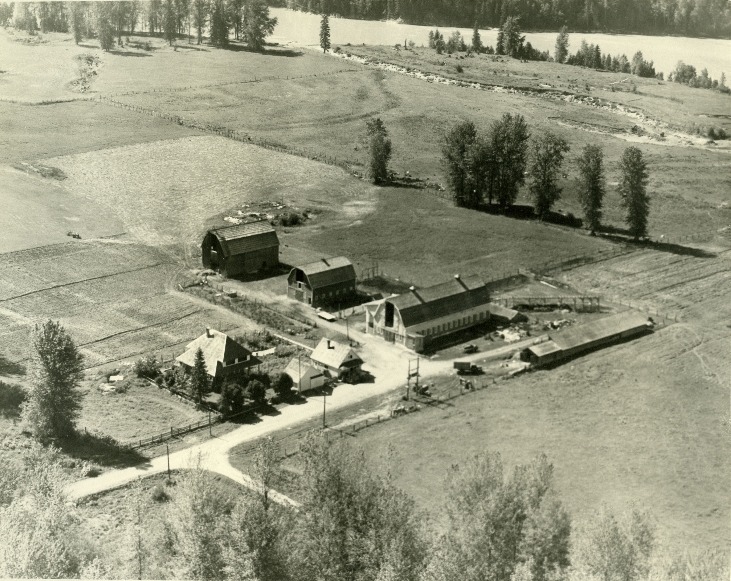 Aerial view of Standard Dairy.