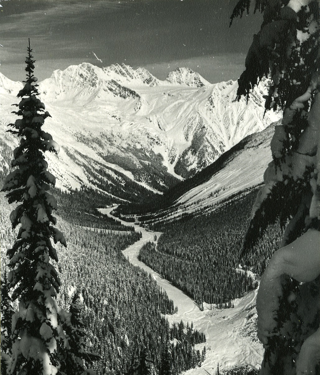 PSA.20 Rogers Pass view from trail to Mt. Abbott. Cleared hwy right of way. 1958.jpg
