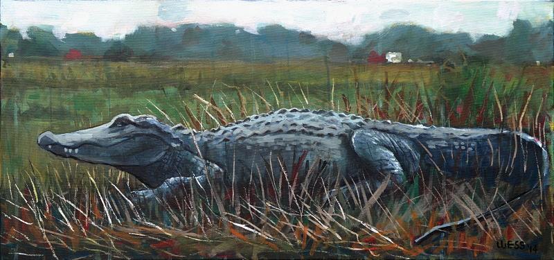 "Alligator, 16x36"", SOLD"