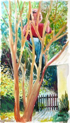 Climbing the Crepe Myrtle