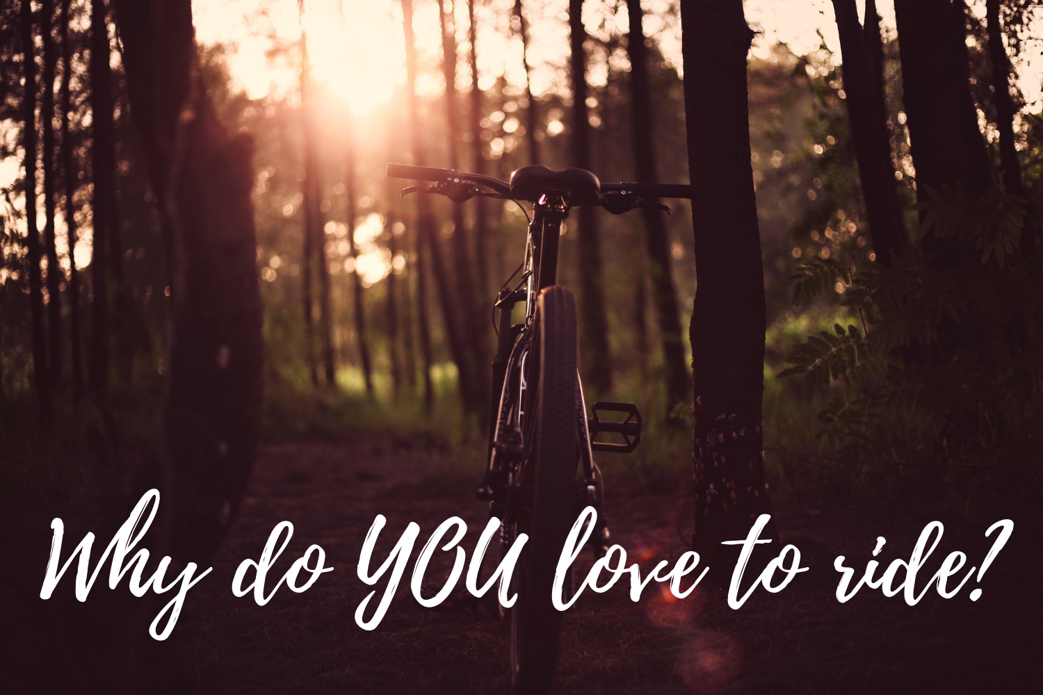 Why do you love to ride?.png