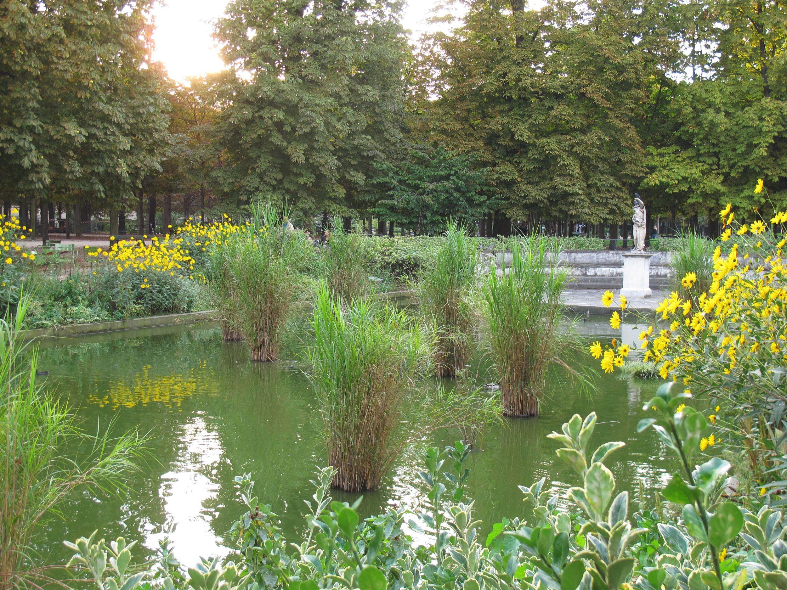 Tuil pond.jpg