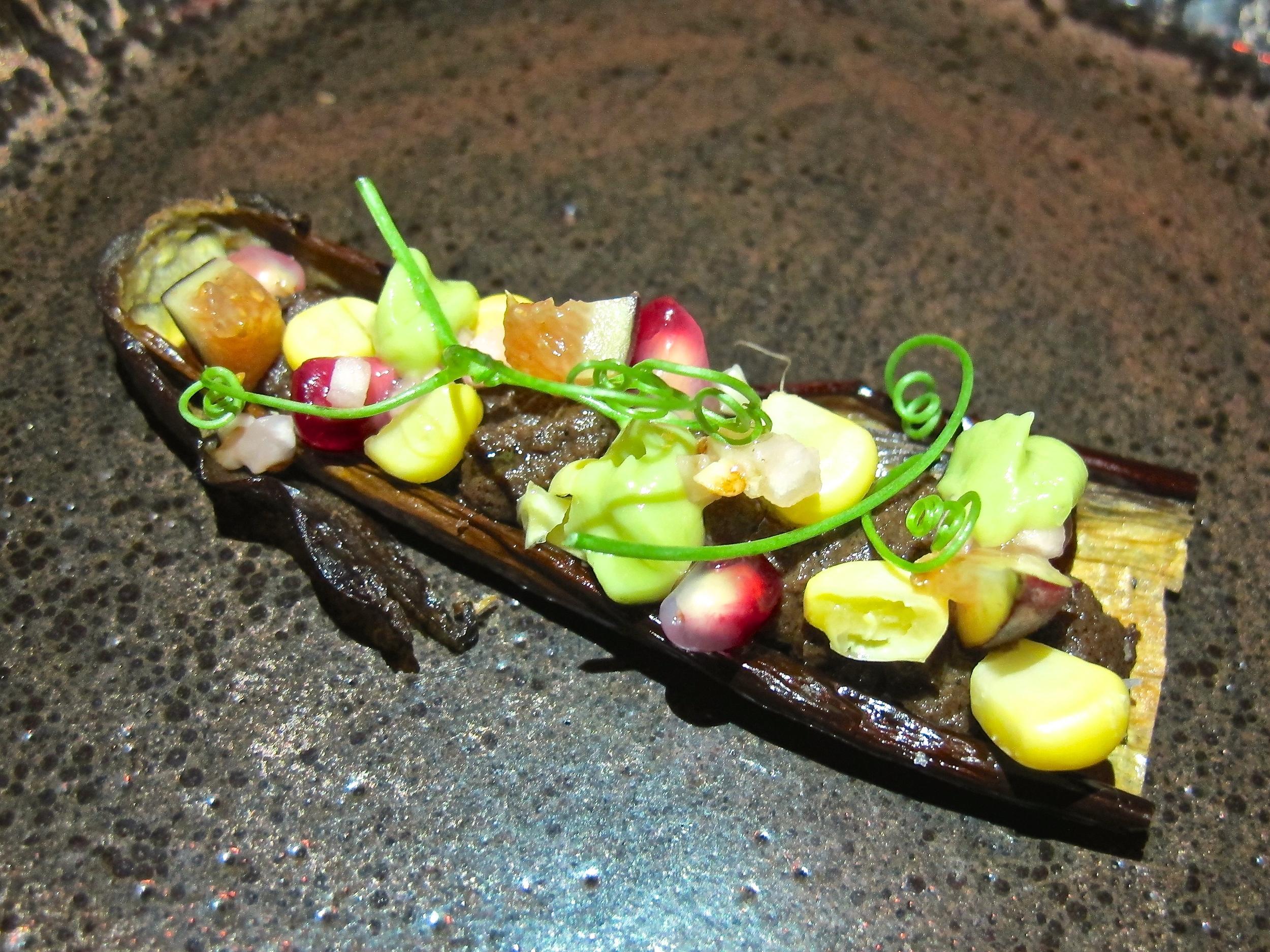 Gadarene Swine eggplant