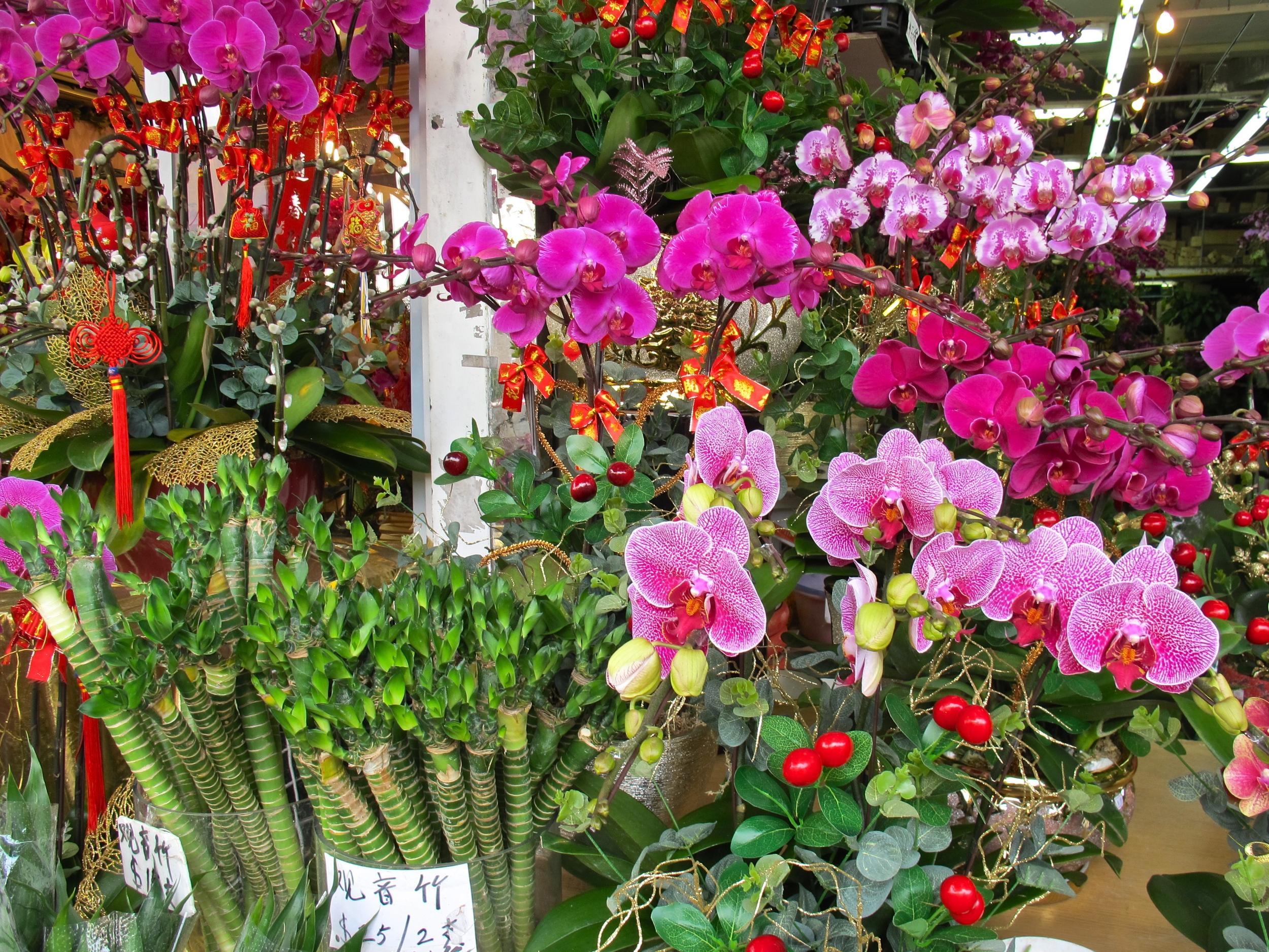 Hong Kong flower market.JPG