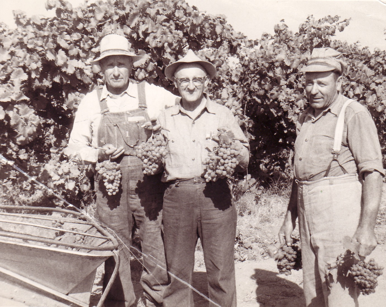 Photo courtesy of Lodi Historical Society