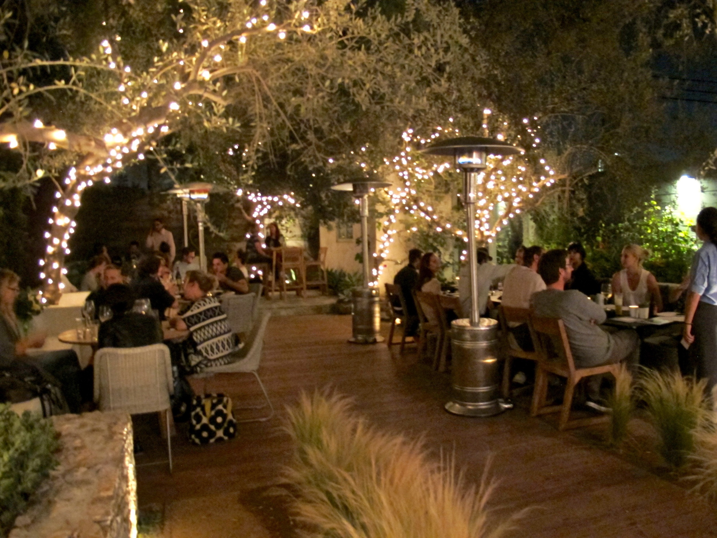Plant Food and Wine Venice