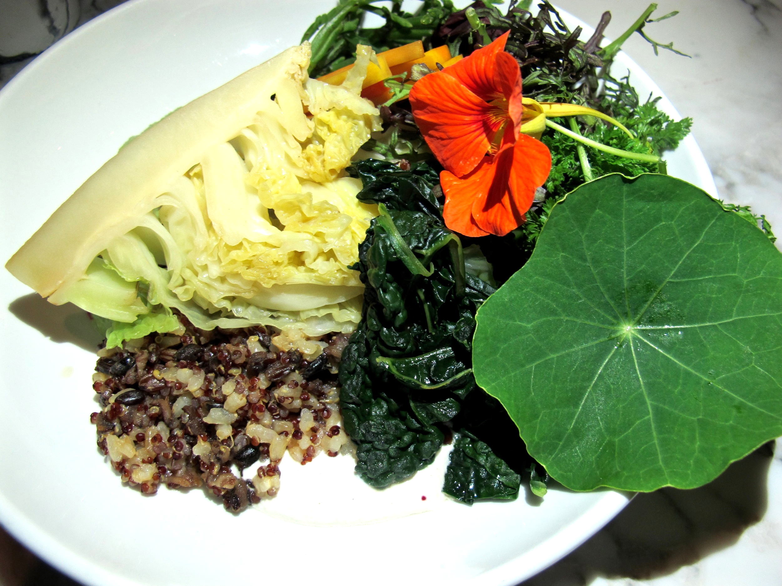 Plant Food and Wine Ancient Grains