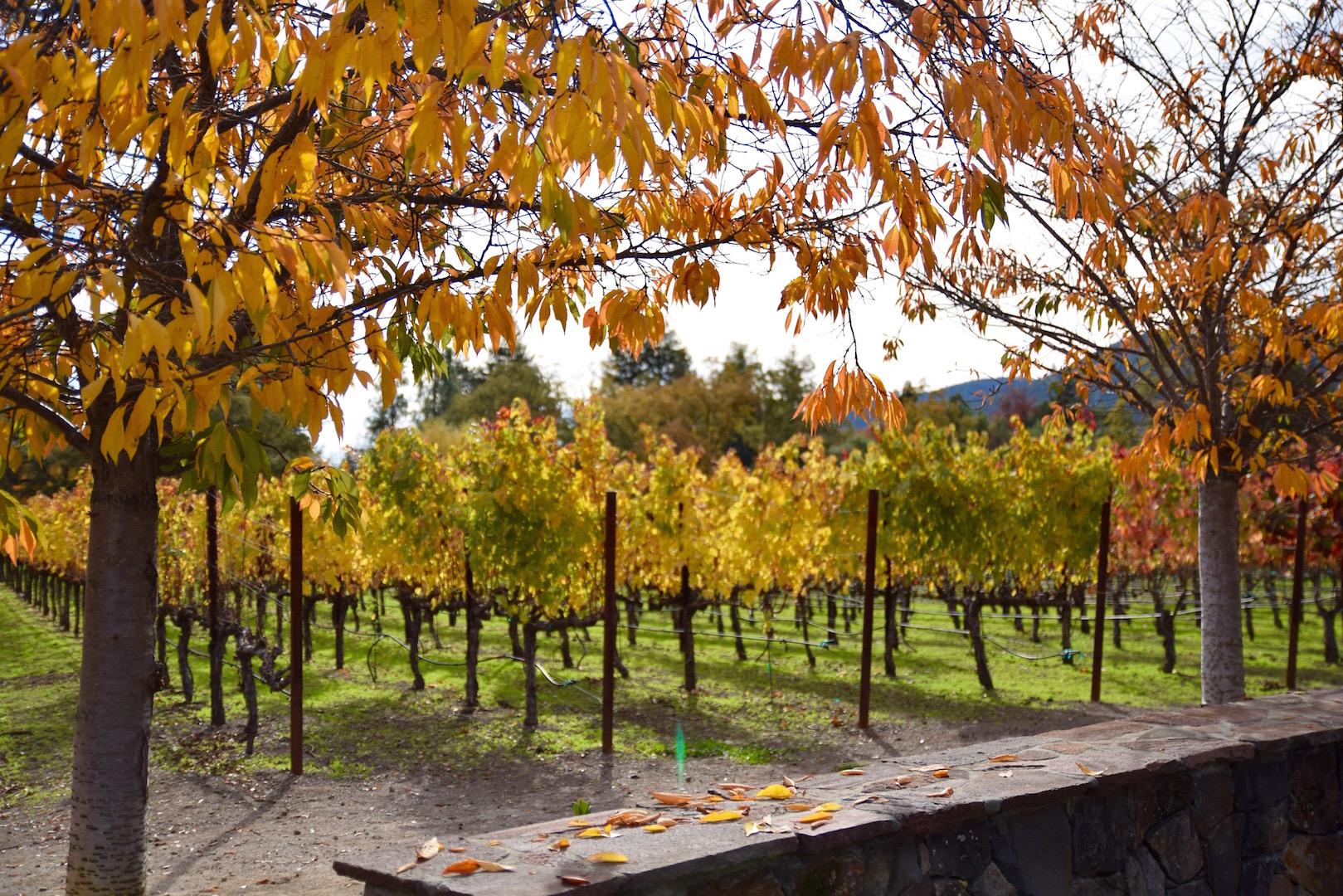 Napa Valley Wine Tasting | TastingPage.com