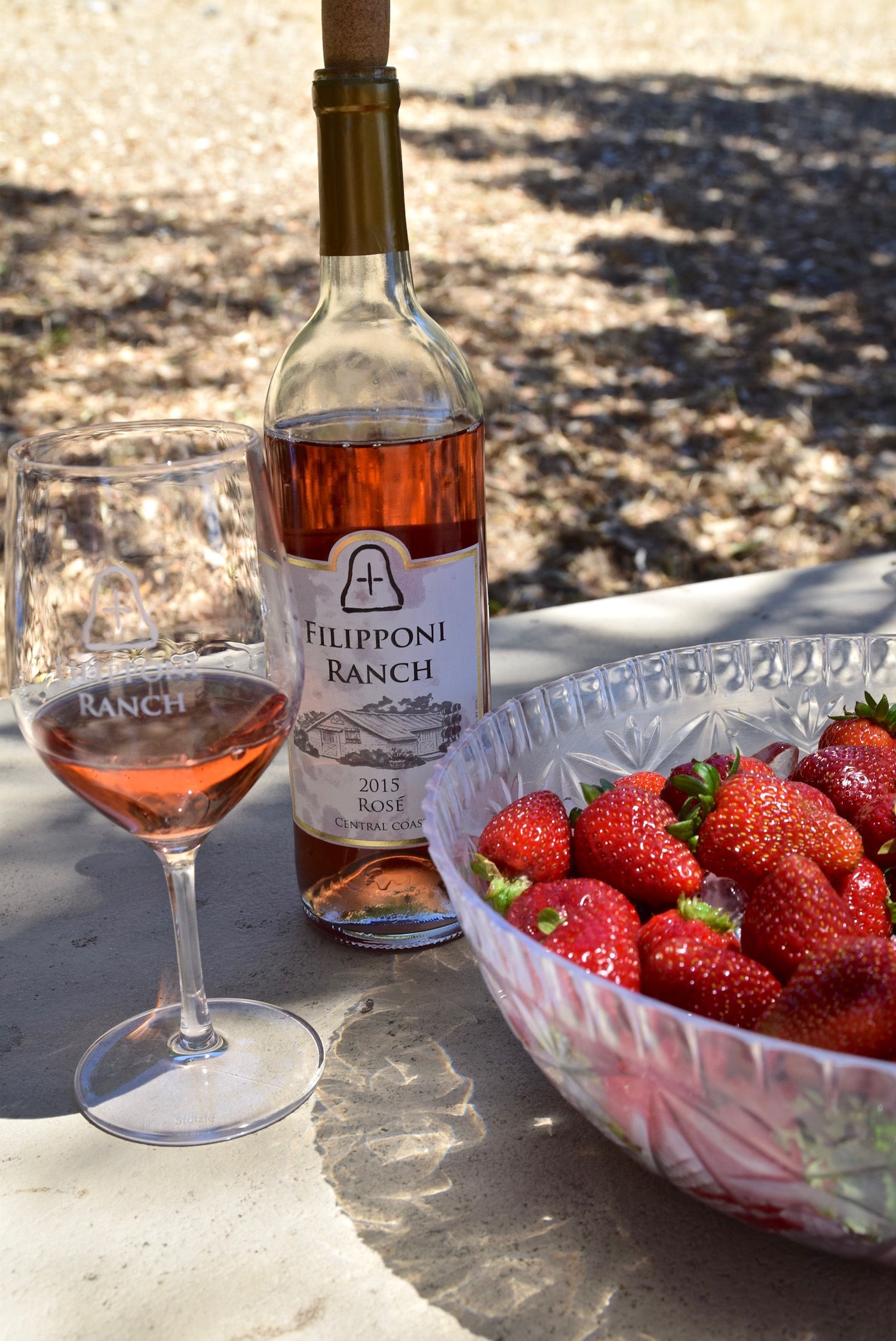 Filipponi Ranch Rose.jpg
