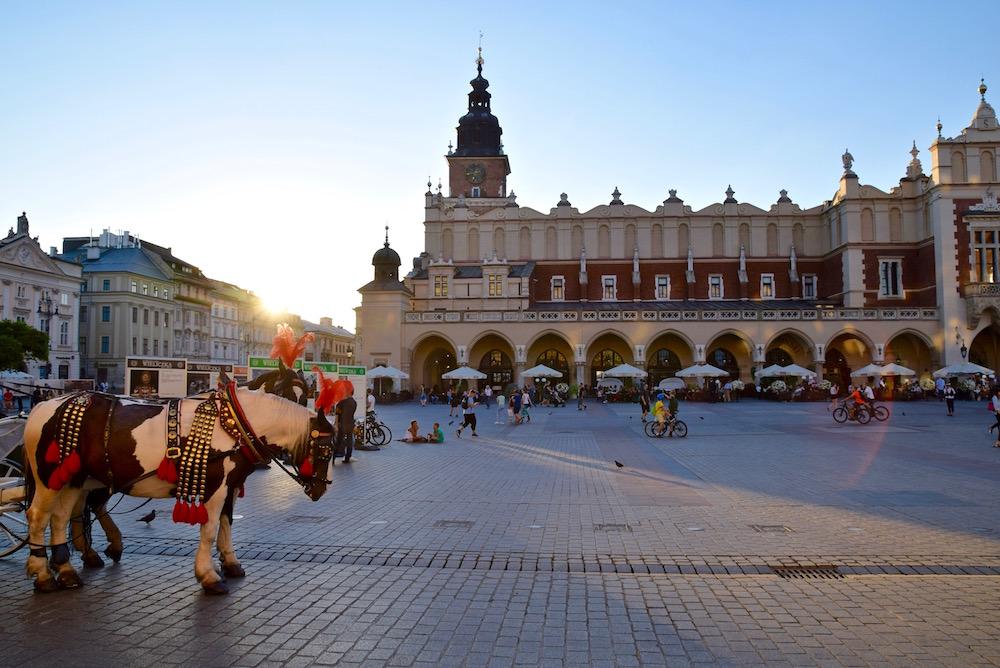 Krakow horse rides.jpg